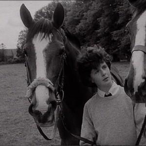 Boy + horses